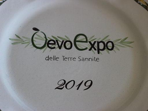 Logo Oevo Expo